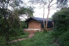 1_jungle-safari-tent-semi-deluxe2