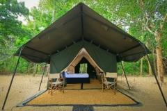 jungle-safari-tent-semi-deluxe3