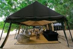 jungle-safari-tent-semi-deluxe6