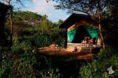 safari-tent_3